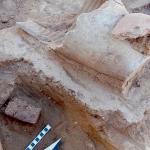 Archeologia Mardaman la scoperta di una città perduta 03